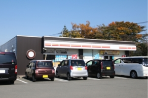 Using Convenience Stores
